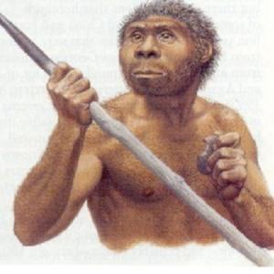 Penemuan-Manusia-Pertama-Indonesia-oleh-Van-Reitschotten